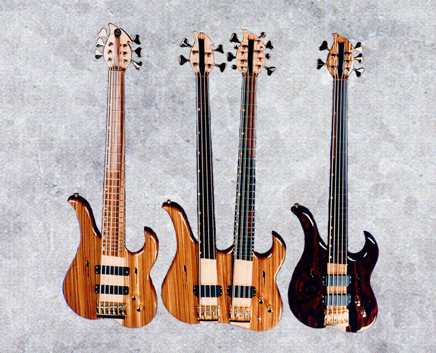 double neck bass