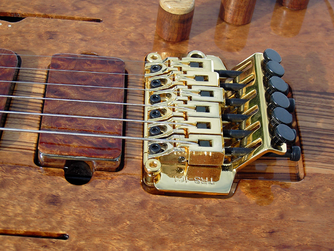 Tremolo Guitar